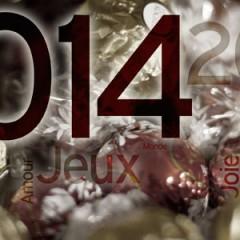 Le point sur 2013 et bonne année 2014 !